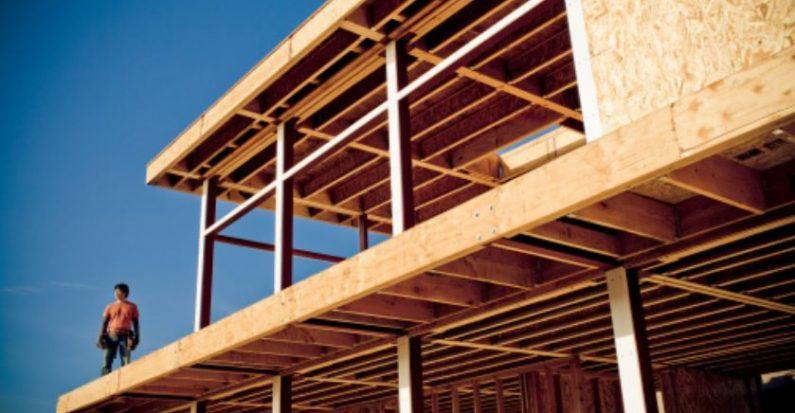 Construction d un b timent en bois les entreprises for Batiment structure bois